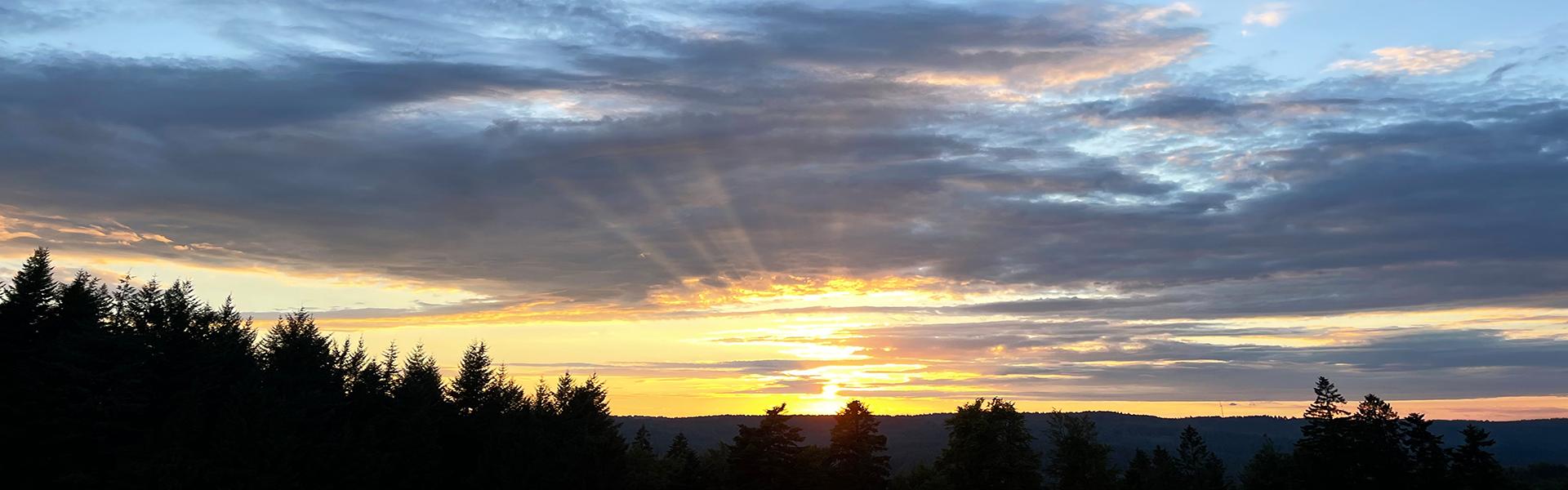 Sonnenuntergang_zugeschnitten